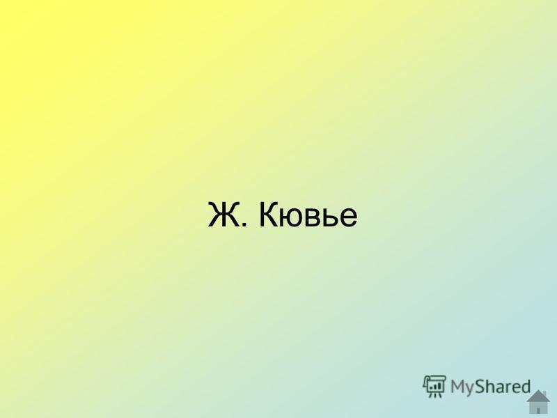 Ж. Кювье