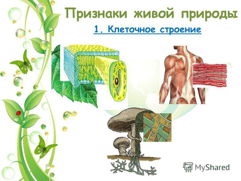 Признаки живой природы 1. Клеточное строение