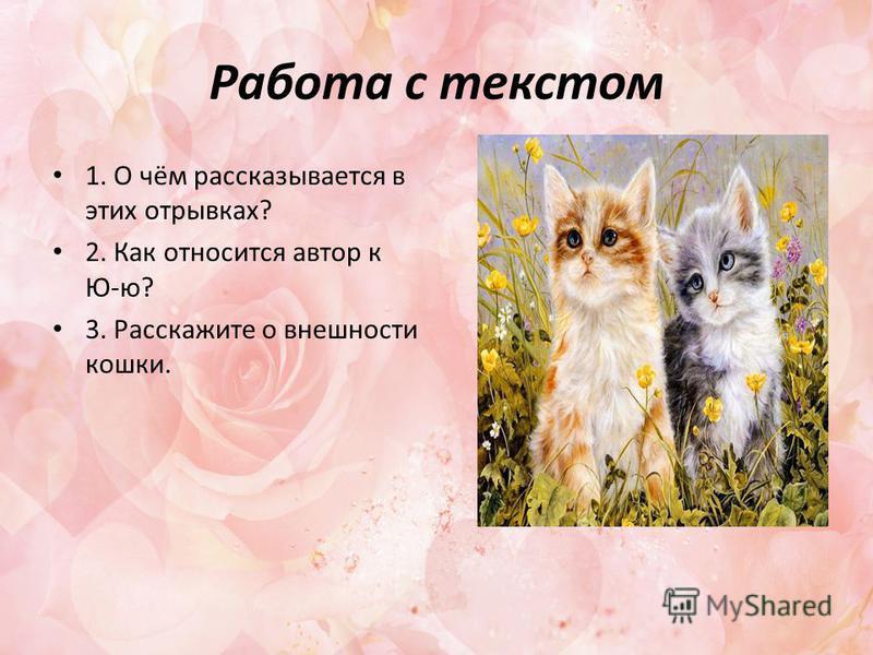 Работа с текстом 1. О чём рассказывается в этих отрывках? 2. Как относится автор к Ю-ю? 3. Расскажите о внешности кошки.