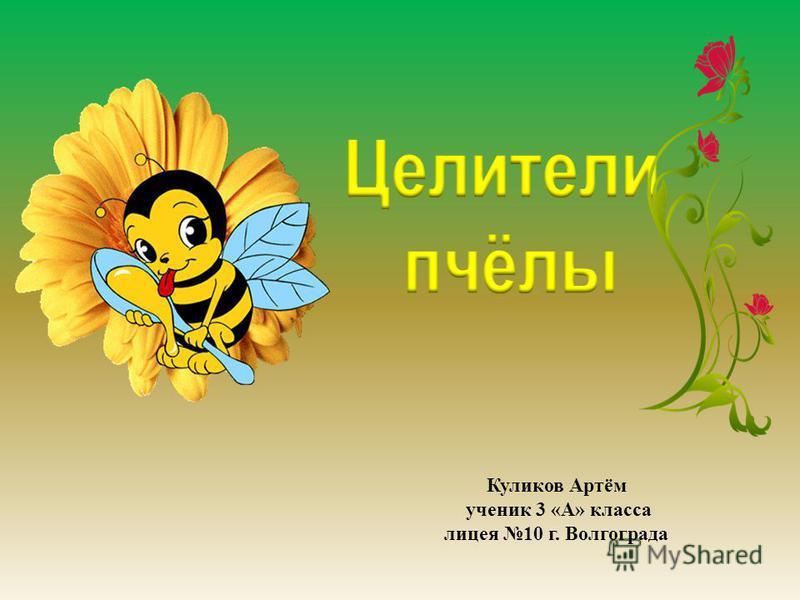 Куликов Артём ученик 3 «А» класса лицея 10 г. Волгограда