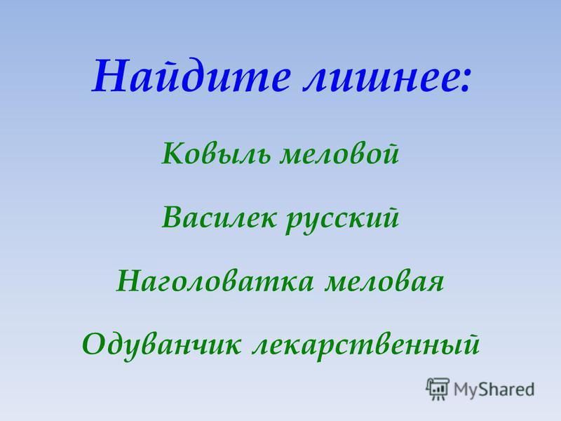 Найдите лишнее: Ковыль меловой Василек русский Наголоватка меловая Одуванчик лекарственный