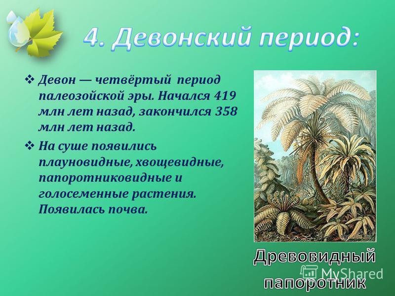 Девон четвёртый период палеозойской эры. Начался 419 млн лет назад, закончился 358 млн лет назад. На суше появились плауновидные, хвощевидные, папоротниковидные и голосеменные растения. Появилась почва.
