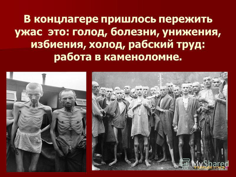 В концлагере пришлось пережить ужас это: голод, болезни, унижения, избиения, холод, рабский труд: работа в каменоломне.