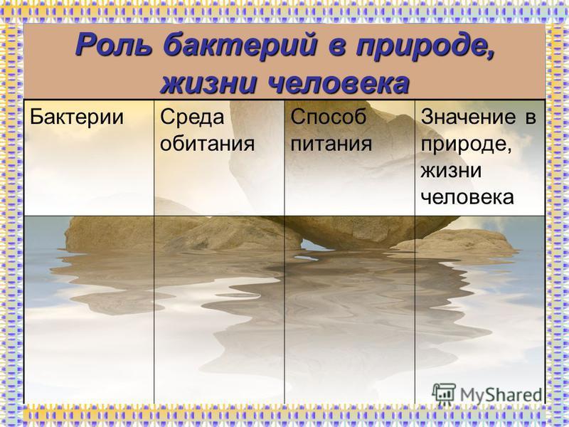 Роль бактерий в природе, жизни человека Бактерии Среда обитания Способ питания Значение в природе, жизни человека