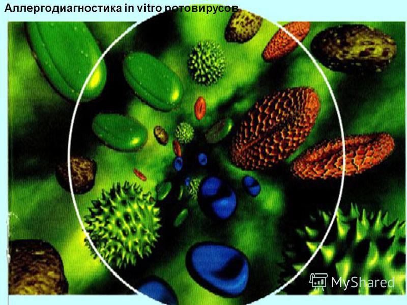 Аллергодиагностика in vitro ротавирусов