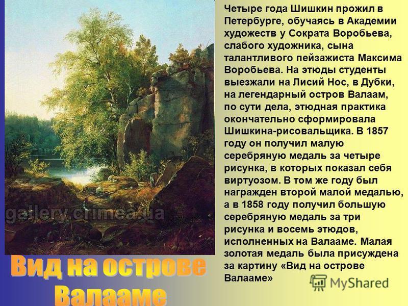 Четыре года Шишкин прожил в Петербурге, обучаясь в Академии художеств у Сократа Воробьева, слабого художника, сына талантливого пейзажиста Максима Воробьева. На этюды студенты выезжали на Лисий Нос, в Дубки, на легендарный остров Валаам, по сути дела