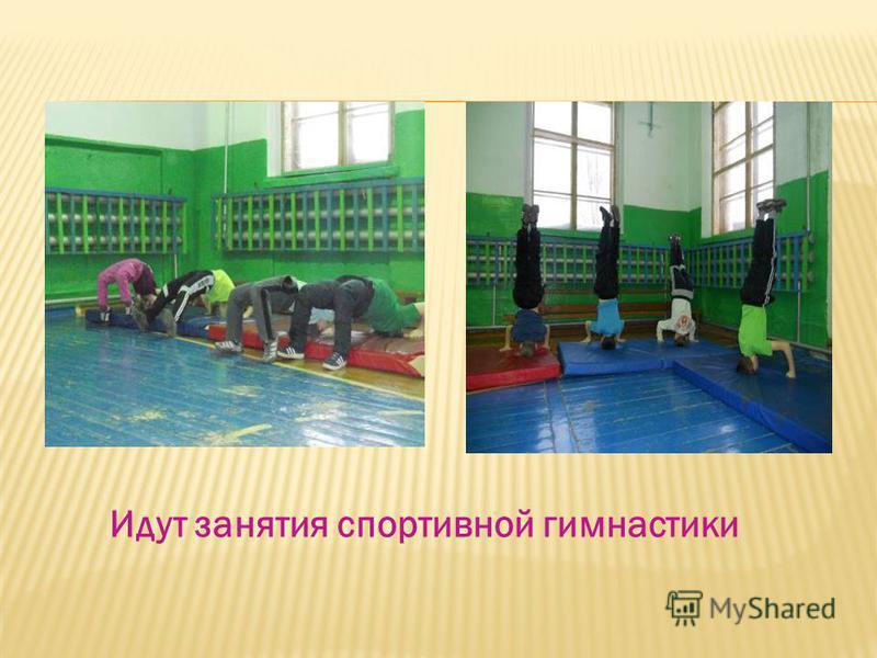Идут занятия спортивной гимнастики