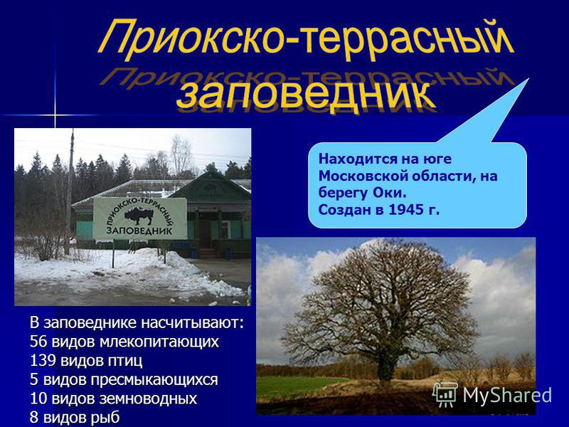 Находится на юге Московской области, на берегу Оки. Создан в 1945 г. В заповеднике насчитывают: 56 видов млекопитающих 139 видов птиц 5 видов пресмыкающихся 10 видов земноводных 8 видов рыб