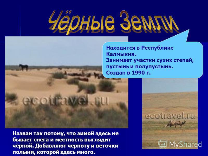 Находится в Республике Калмыкия. Занимает участки сухих степей, пустынь и полупустынь. Создан в 1990 г. Назван так потому, что зимой здесь не бывает снега и местность выглядит чёрной. Добавляют черноту и веточки полыни, которой здесь много.