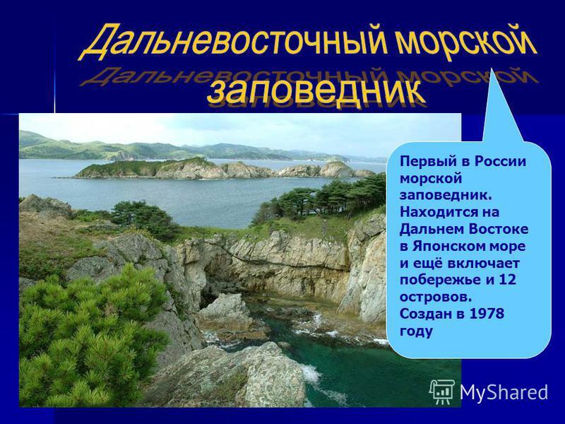 Первый в России морской заповедник. Находится на Дальнем Востоке в Японском море и ещё включает побережье и 12 островов. Создан в 1978 году