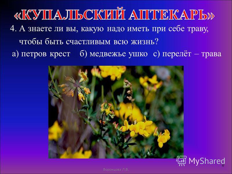4. А знаете ли вы, какую надо иметь при себе траву, чтобы быть счастливым всю жизнь? Воронцова Л.В. 6 а) петров крестб) медвежье ушкос) перелёт – трава