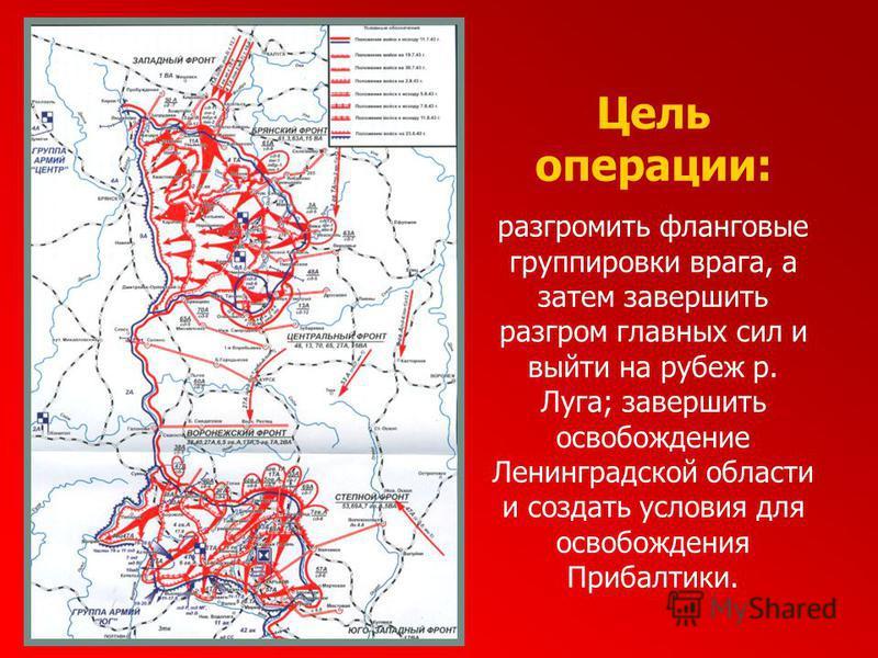 Цель операции: разгромить фланговые группировки врага, а затем завершить разгром главных сил и выйти на рубеж р. Луга; завершить освобождение Ленинградской области и создать условия для освобождения Прибалтики.