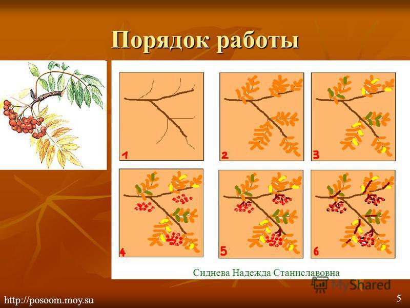 Порядок работы http://posoom.moy.su Сиднева Надежда Станиславовна 5