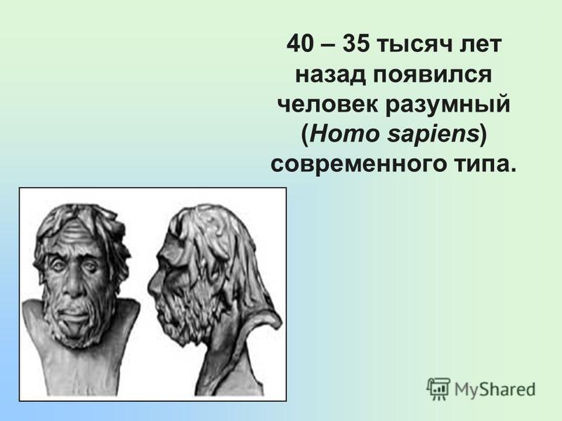 40 – 35 тысяч лет назад появился человек разумный (Homo sapiens) современного типа.