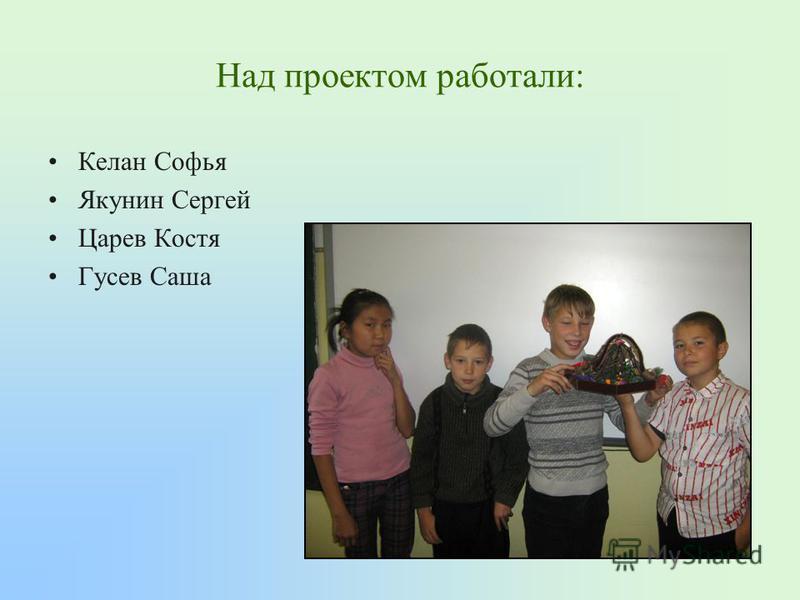 Над проектом работали: Келан Софья Якунин Сергей Царев Костя Гусев Саша