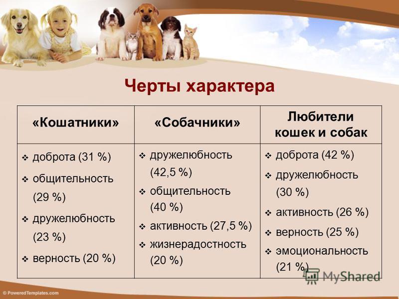Черты характера «Кошатники»«Собачники» Любители кошек и собак доброта (31 %) общительность (29 %) дружелюбность (23 %) верность (20 %) дружелюбность (42,5 %) общительность (40 %) активность (27,5 %) жизнерадостность (20 %) доброта (42 %) дружелюбност