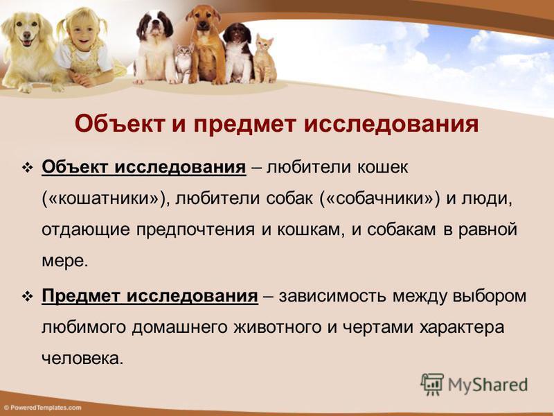 Объект исследования – любители кошек («кошатники»), любители собак («собачники») и люди, отдающие предпочтения и кошкам, и собакам в равной мере. Предмет исследования – зависимость между выбором любимого домашнего животного и чертами характера челове