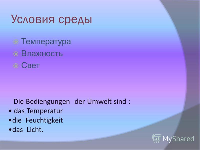 Условия среды Температура Влажность Свет Die Bediengungen der Umwelt sind : das Temperatur die Feuchtigkeit das Licht.