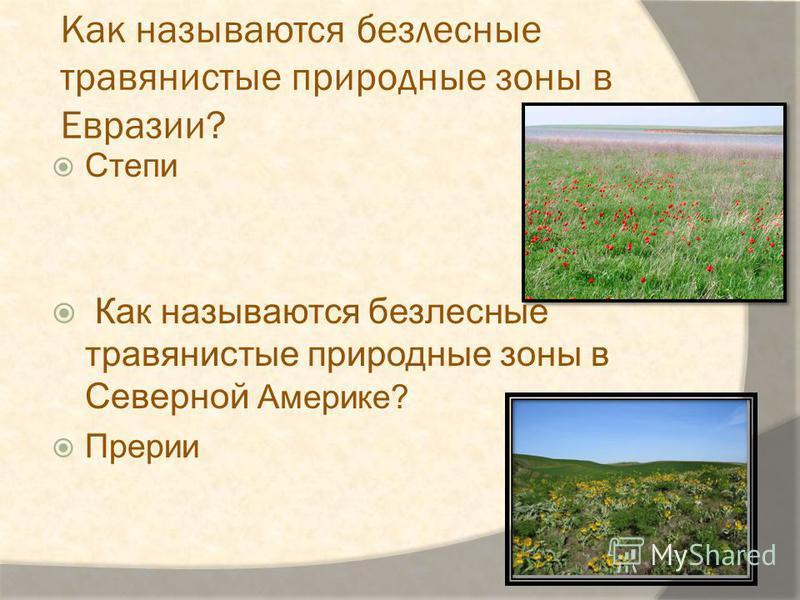 Как называются безлесные травянистые природные зоны в Евразии? Степи Как называются безлесные травянистые природные зоны в Северной Америке? Прерии