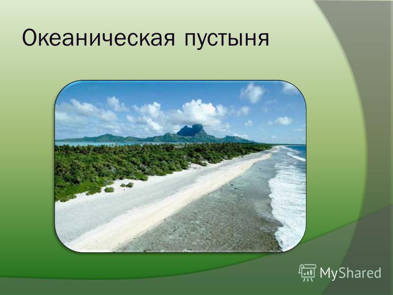 Океаническая пустыня