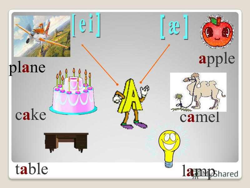 table plane cake apple camel lamp