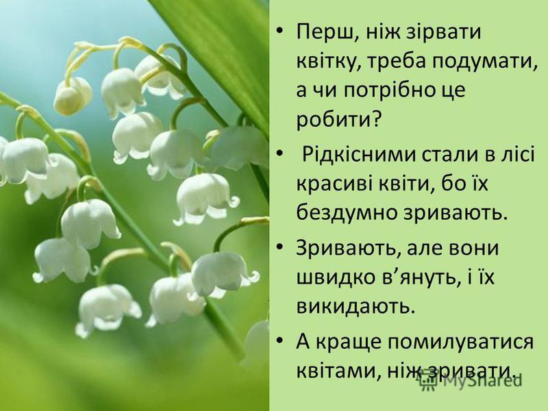 Перш, ніж зірвати квітку, треба подумати, а чи потрібно це робити? Рідкісними стали в лісі красиві квіти, бо їх бездумно зривають. Зривають, але вони швидко вянуть, і їх викидають. А краще помилуватися квітами, ніж зривати.