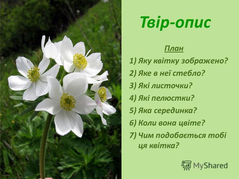 Твір-опис План 1)Яку квітку зображено? 2)Яке в неї стебло? 3)Які листочки? 4)Які пелюстки? 5)Яка серединка? 6)Коли вона цвіте? 7)Чим подобається тобі ця квітка?