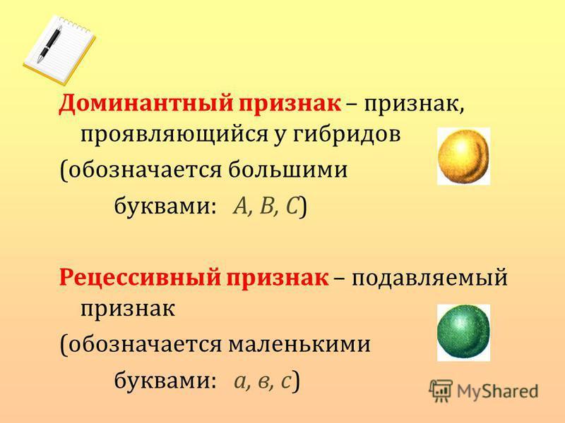 Доминантный признак – признак, проявляющийся у гибридов (обозначается большими буквами: А, В, С) Рецессивный признак – подавляемый признак (обозначается маленькими буквами: а, в, с)