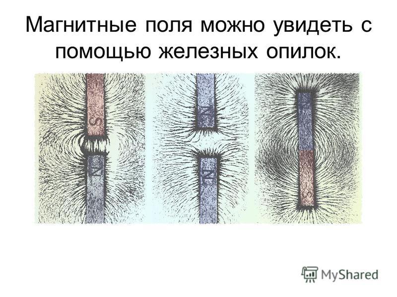 Магнитные поля можно увидеть с помощью железных опилок.