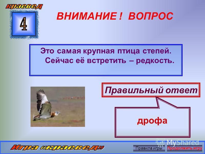 ВНИМАНИЕ ! ВОПРОС Какой зверёк изображён на гербе Оренбургской области? Правильный ответ куница Правила игры Продолжить игру