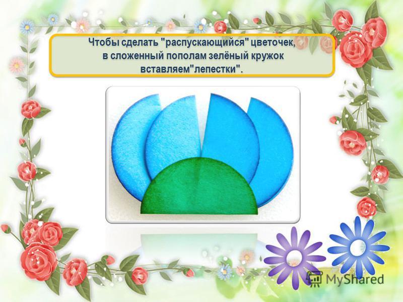 Чтобы сделать распускающийся цветочек, в сложенный пополам зелёный кружок вставляемлепестки. Чтобы сделать распускающийся цветочек, в сложенный пополам зелёный кружок вставляемлепестки.