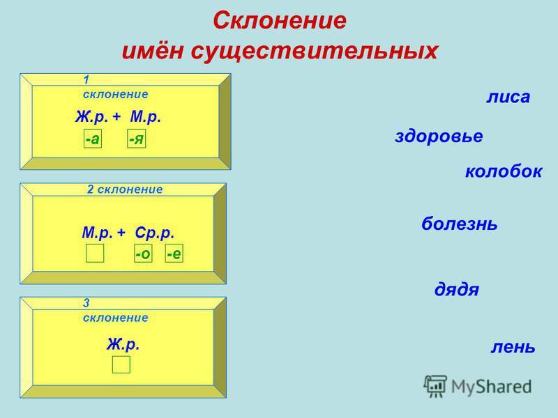 Склонение имён существительных 1 склонение 2 склонение 3 склонение Ж.р. + М.р. -а-я 1 склонение М.р. + Ср.р. -о-е 2 склонение Ж.р. 3 склонение лиса здоровье колобок болезнь дядя лень