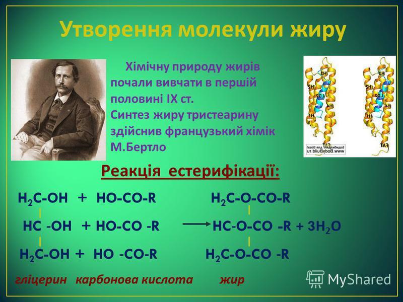 Утворення молекули жиру H 2 C-OH + HO-CO-R H 2 C-O-CO-R HC -OH + HO-CO -R HC-O-CO -R + 3 Н 2 О H 2 C-OH + HO -CO-R H 2 C-O-CO -R гліцерин карбонова кислота жир Реакція естерифікації : Хімічну природу жирів почали вивчати в першій половині ІХ ст. Синт