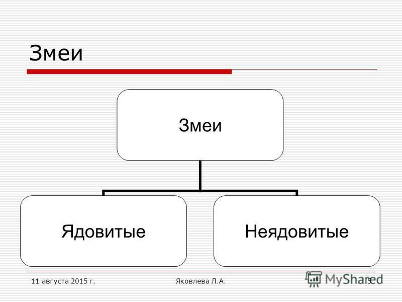 11 августа 2015 г.Яковлева Л.А.5 Змеи Ядовитые Неядовитые