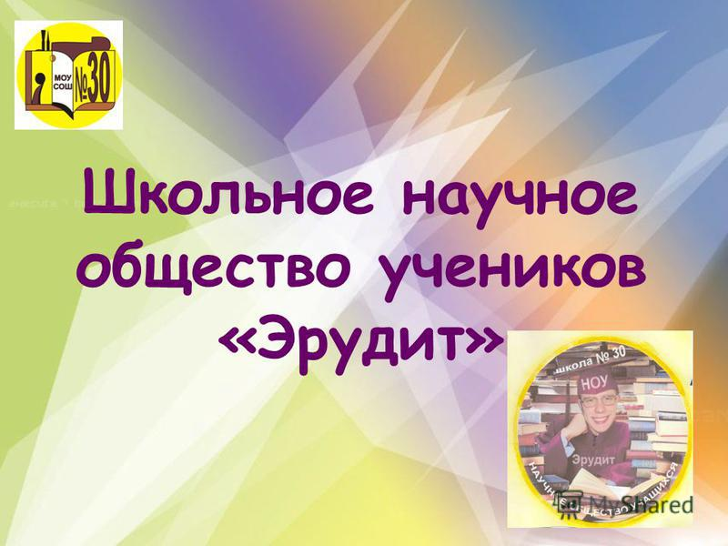 Школьное научное общество учеников «Эрудит»