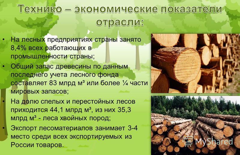 На лесных предприятиях страны занято 8,4% всех работающих в промышленности страны; Общий запас древесины по данным последнего учета лесного фонда составляет 83 млрд м³ или более ¼ части мировых запасов; На долю спелых и перестойных лесов приходится 4