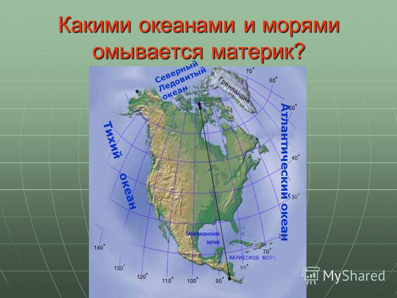 Какими океанами и морями омывается материк? Атлантический океан Тихий океан Северный Ледовитый океан