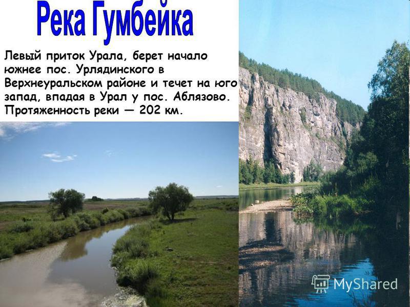 Левый приток Урала, берет начало южнее пос. Урлядинского в Верхнеуральском районе и течет на юго- запад, впадая в Урал у пос. Аблязово. Протяженность реки 202 км.