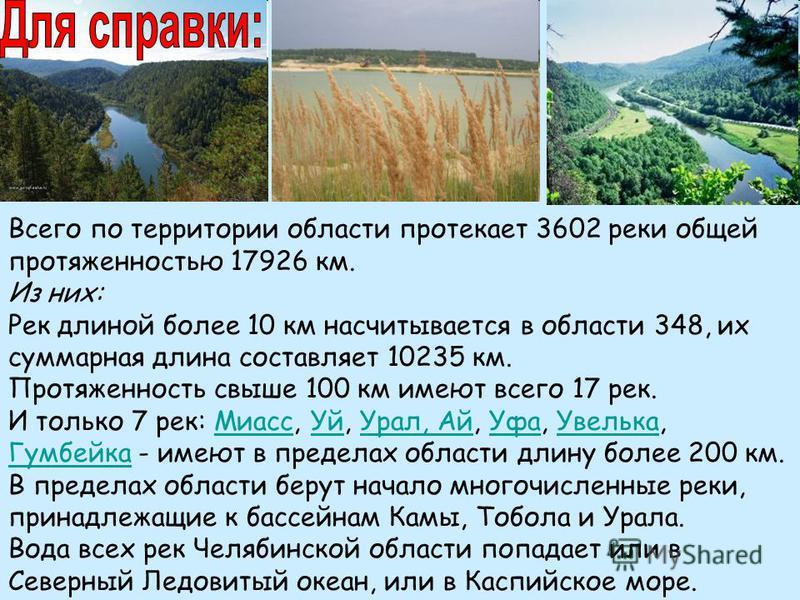 Всего по территории области протекает 3602 реки общей протяженностью 17926 км. Из них: Рек длиной более 10 км насчитывается в области 348, их суммарная длина составляет 10235 км. Протяженность свыше 100 км имеют всего 17 рек. И только 7 рек: Миасс, У