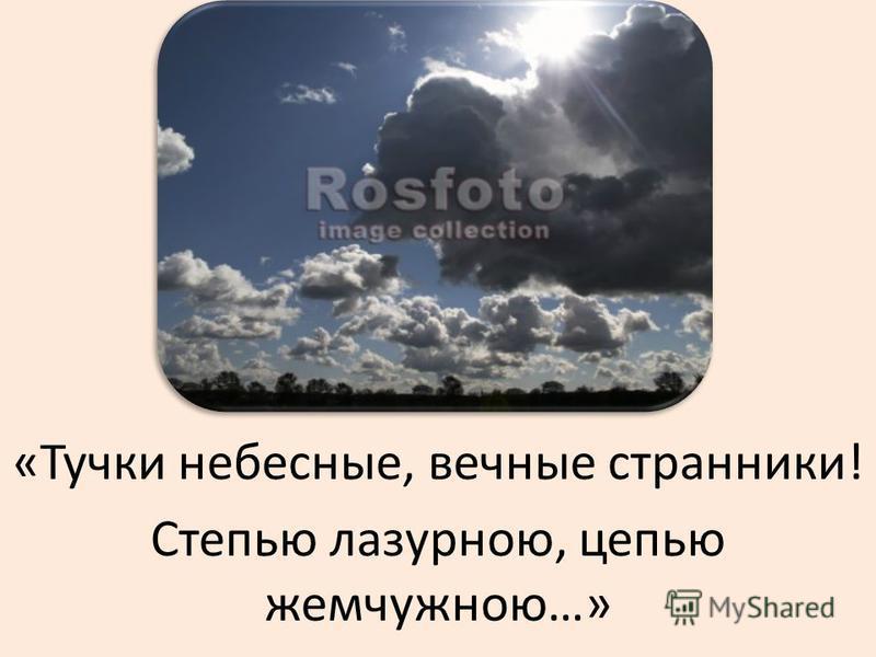 «Тучки небесные, вечные странники! Степью лазурною, цепью жемчужною…»