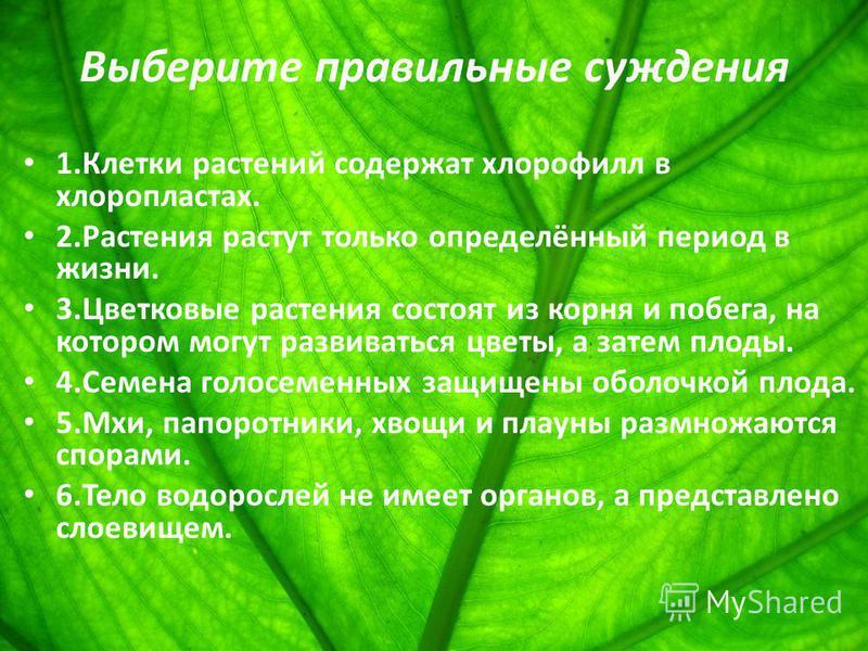 Выберите правильные суждения 1. Клетки растений содержат хлорофилл в хлоропластах. 2. Растения растут только определённый период в жизни. 3. Цветковые растения состоят из корня и побега, на котором могут развиваться цветы, а затем плоды. 4. Семена го