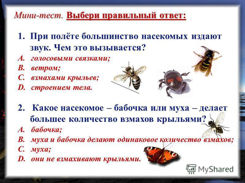 Мини-тест. Выбери правильный ответ: 1. При полёте большинство насекомых издают звук. Чем это вызывается? A. голосовыми связками; B. ветром; C. взмахами крыльев; D. строением тела. 2. Какое насекомое – бабочка или муха – делает большее количество взма