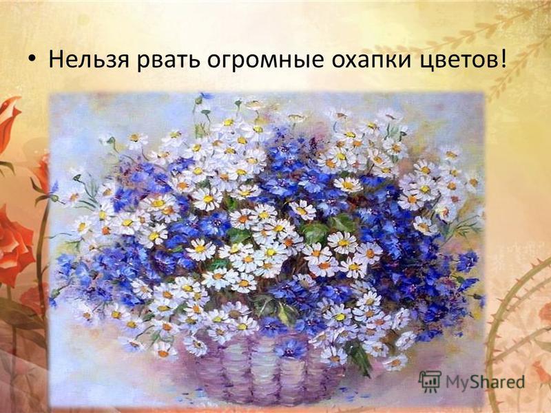 Нельзя рвать огромные охапки цветов!