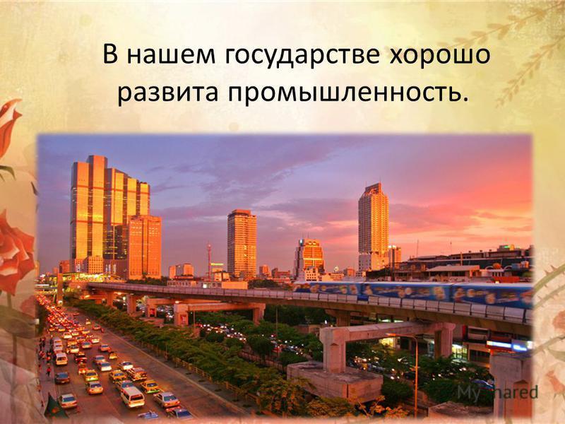 В нашем государстве хорошо развита промышленность.