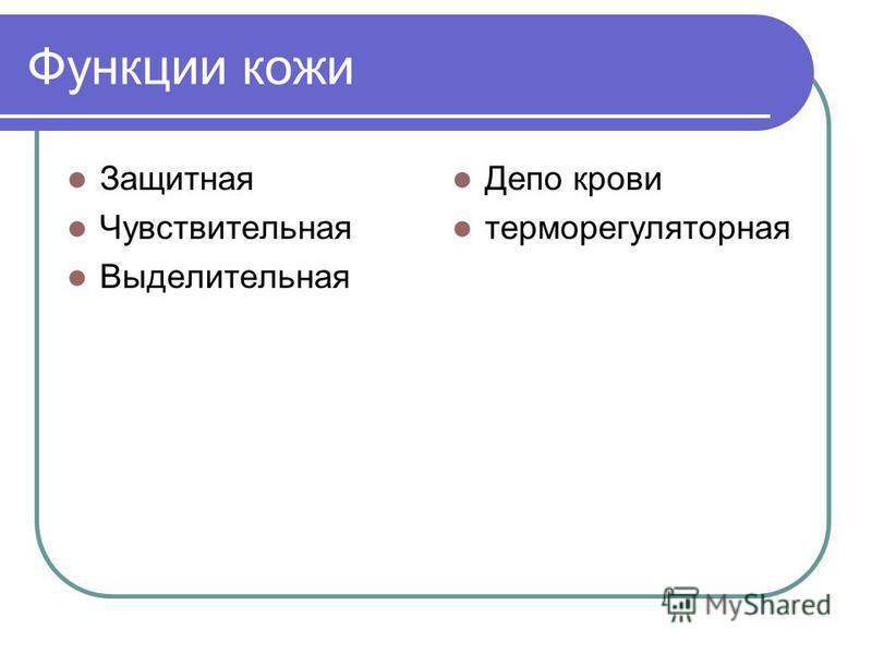Функции кожи Защитная Чувствительная Выделительная Депо крови терморегуляторная
