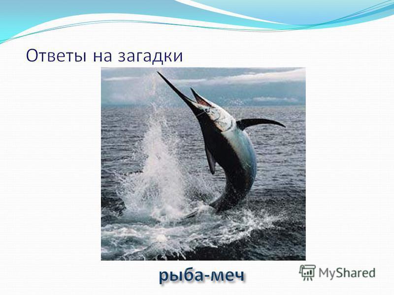 Люд морской встревожен - Меч плывет без ножен