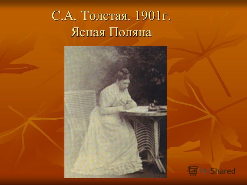 С.А. Толстая. 1901 г. Ясная Поляна