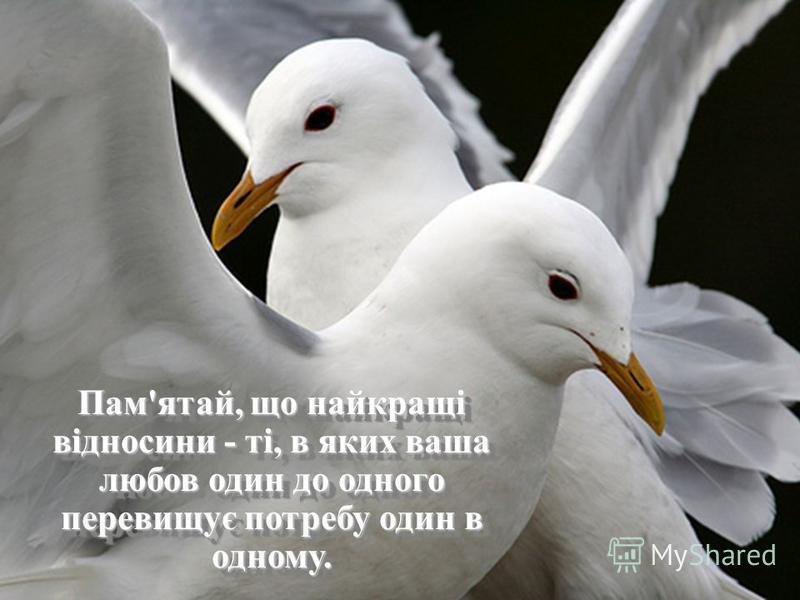 Пам'ятай, що найкращі відносини - ті, в яких ваша любов один до одного перевищує потребу один в одному.