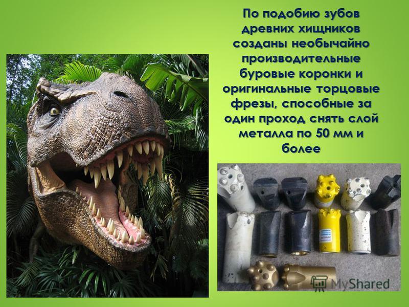 По подобию зубов древних хищников созданы необычайно производительные буровые коронки и оригинальные торцовые фрезы, способные за один проход снять слой металла по 50 мм и более
