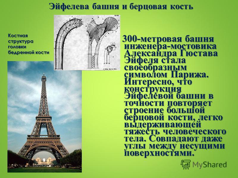 Эйфелева башня и берцовая кость 300-метровая башня инженера-мостовика Александра Гюстава Эйфеля стала своеобразным символом Парижа. Интересно, что конструкция Эйфелевой башни в точности повторяет строение большой берцовой кости, легко выдерживающей т